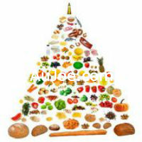 Easiest Weight Loss Diets to follow