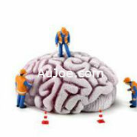 Improve Brain Function with exercise